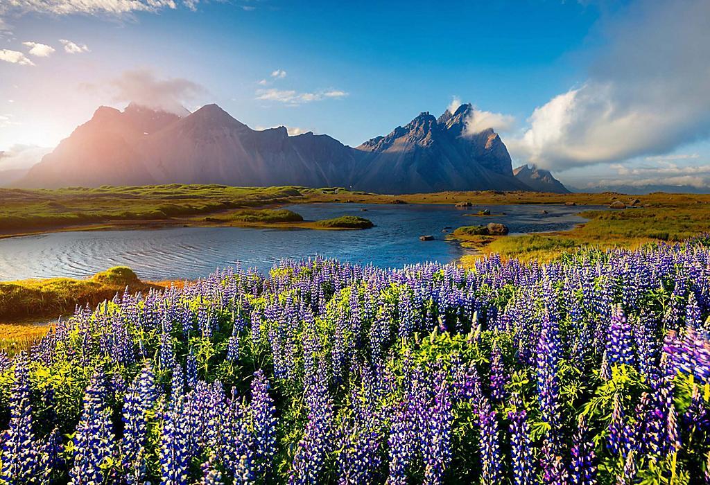 Naturskjønn utsikt over islandsk landskap