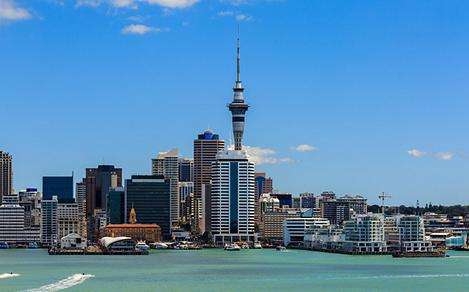 New Zealand City Landscape