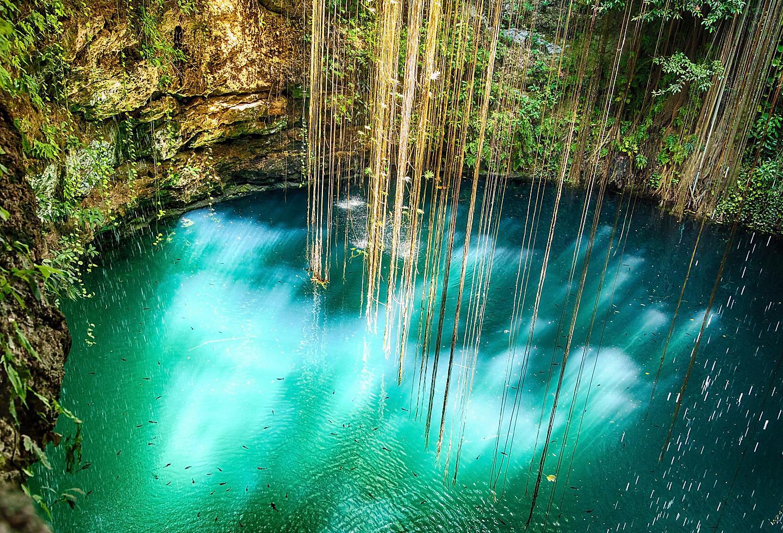 Mexico Cancun Ik Kil Cenote Vines