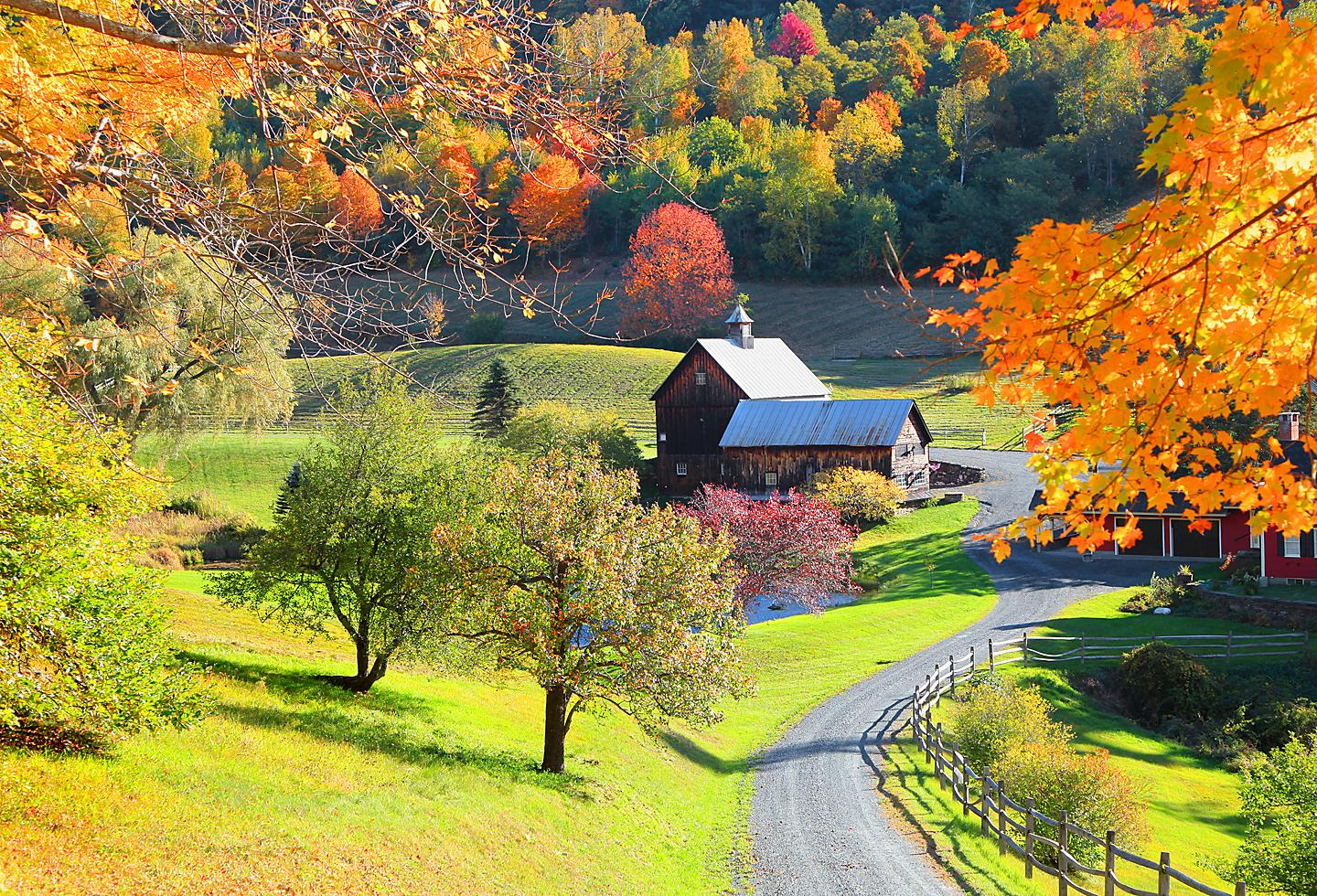 Vermont Woodstock Farm During Fall