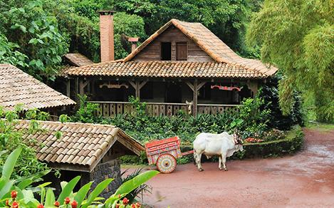 Traditional Home with an Oxen in Costa Rica