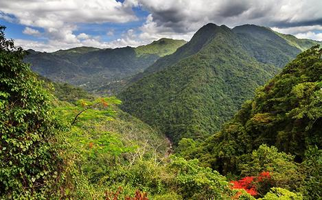 Mountains and Jungles in Puerto Rico