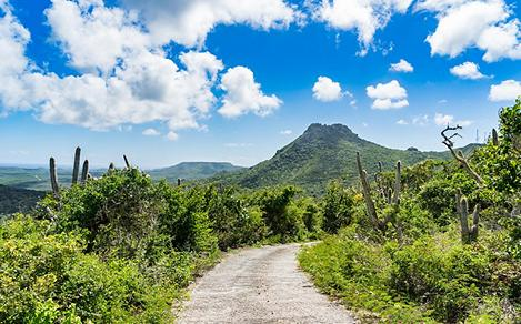 Bike Riding Trails in the Caribbean