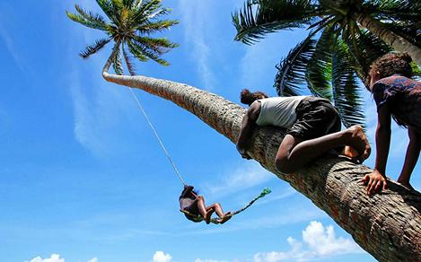 Rope Swing in Fiji, South Pacific Attraction