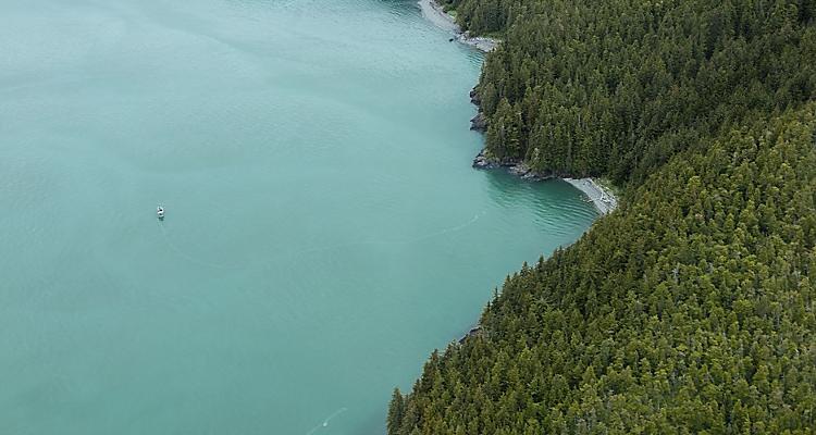 alaska, Juneau, glacier, flightseeing, plane, excursion, tour, shore excursion, taku glacier, floatplane, Taku, Taku glacier, taku glacier lodge, taku lodge