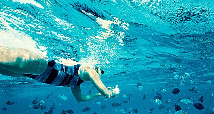 woman snorkeling with camera taking pictures of fish off Grand Cayman Islands.  Ocean, water activity, shore excursion, caribbean