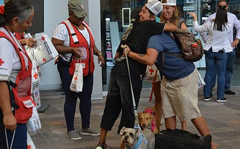 irma couple dogs red cross