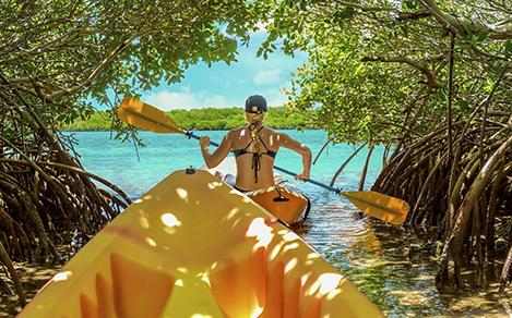 Relax while kayaking through the mangroves at one of Royal Caribbeans amazing beach destinations