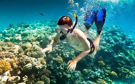 snorkel tiles10