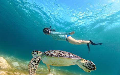 snorkeltiles11