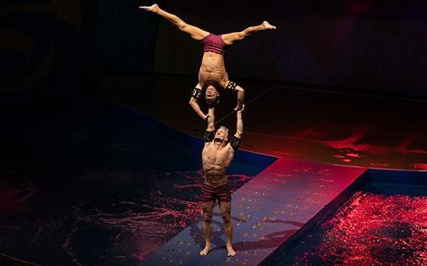 Oceanaria Aquatheater Perforners Doing Acrobatics