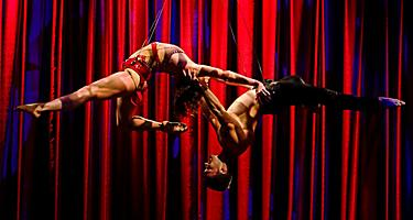 Acrobatic Performers on Live, Love, Legs Show