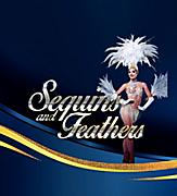 Sequins and feathers banner