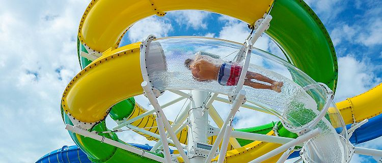Things to Do | Freedom of the Seas | Royal Caribbean Cruises