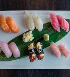 A top-down view of assorted Sashimi on a white plate at Izumi on a Royal Caribbean ship