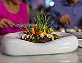 Baby Vegetables in the Garden at Wonderland on a Royal Caribbean cruise ship