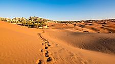 The orange sand desert in Abu Dhabi, United Arab Emirates