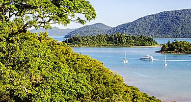View of Shute Harbour from a rainforest in Australia