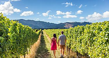 A couple on an organic wine takamutua tasting in the vineyards of New Zealand