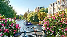 Beautiful sunrise over Amsterdam, Netherlands, with flowers and bicycles on a bridge in spring