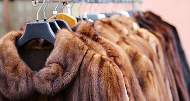 A rack with fur coats at a store