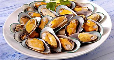 A plate full of New Zealand green mussels