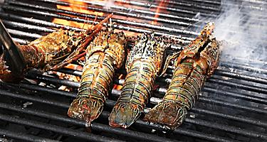 Four spiny lobster tails on a grill