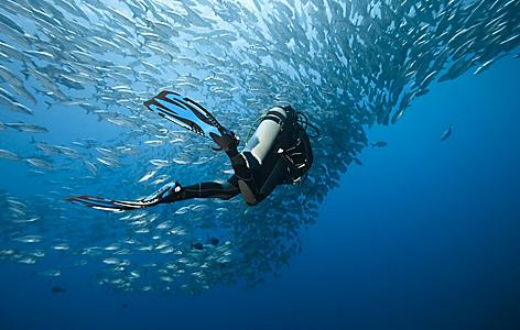 A diver underwater swimming with fish in Boracay, Phillippines