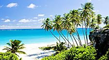 Sunny day with palm trees on Bottom Bay Beach in Bridgetown, Barbados