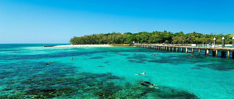 People snorkeling in Green Island, Australia
