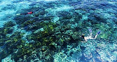 Two people snorkeling the Great Barrier Reef in Queensland, Australia