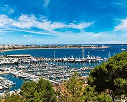 aerial view of boats docked at a harbor in Cannes, France
