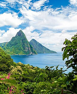 View of the Pitons from vegetation in Castries, St. Lucia