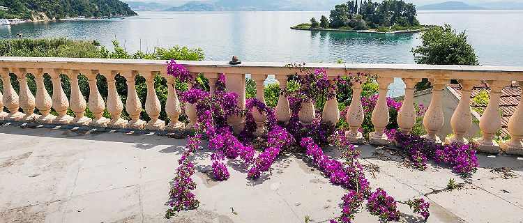 View of waterfront with bougainvillea flowers in Corfu, Greece