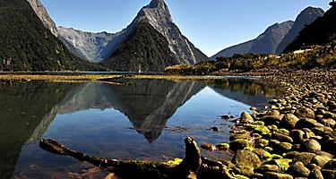 The Fiordland Park with views of the water in Doubtful Sound, New Zealand