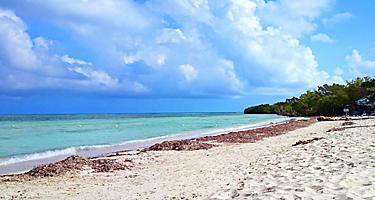 View of Burwood Beach in Falmouth, Jamaica
