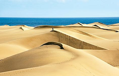 Coastal sand dunes in Gran Canaria, Canary Islands