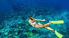 Underwater activities in the beaches of Grand Bahama Island, Bahamas include snorkeling to see marine life