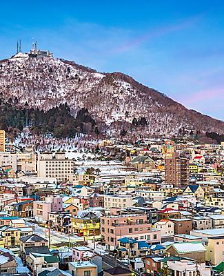 View of the town of Hakodate with Mt. Hakodate in the background, in Hakodate, Japan