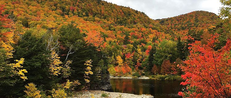 Nova Scotia Cape Breton Island Fall