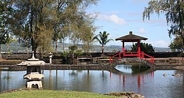A Japanese garden in Hawaii