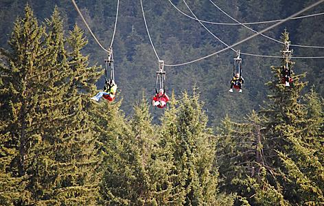 A family of four zip riding through the mountains and pine trees in Icy Strait Point, Alaska