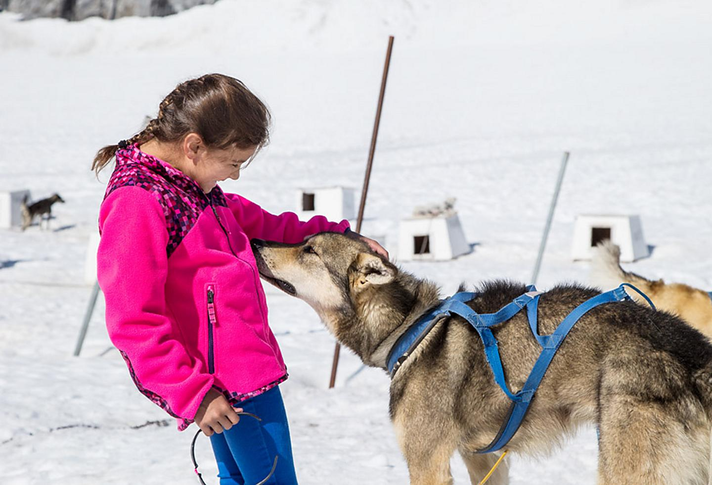 Girl Petting Wolf at Dawes Glacier