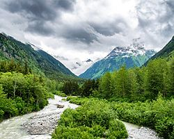alaska inside passage national park forest green mountains