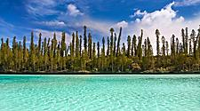 The coastal landscape full of trees at Isle of Pines, New Caledonia