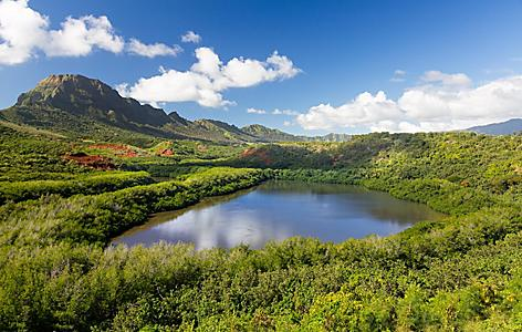Traditional hawaiian fish pond in Kauai, Hawaii
