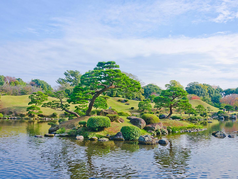 Kumamoto, Japan Garden Japanese Tree