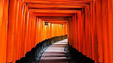 The orange or red column entrance for the Tori Gates in Kyoto, Japan