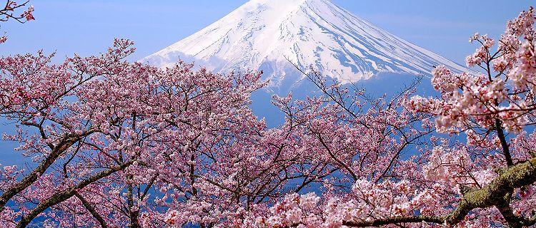 Cruises to Kyoto (Osaka), Japan | Royal Caribbean Cruises
