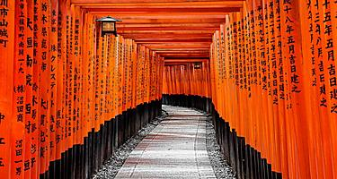 The red Tori Gates pathway with tall red columns with Japanese letters written in black in Kyoto, Japan